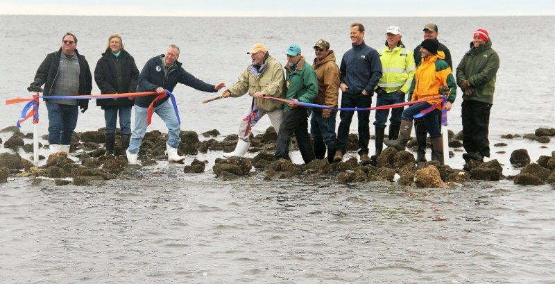 Reef ribbon cutting better